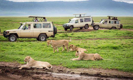 Ngorongoro 4a
